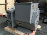 Str.-einphasig-Drehstromgenerator-Preis in den Indien Wechselstrom-Drehstromgeneratoren für Drehstromgenerator des Verkaufs-5kv