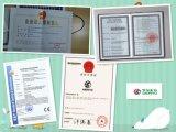 La vendita calda Cina due teste ha automatizzato la macchina del ricamo con 6 9 12 15 aghi