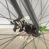 最新および強力な48V1000W中間駆動機構の電気脂肪質のタイヤの自転車