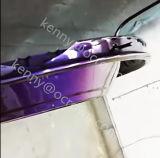 Pigmento superficial del camaleón de la capa del motor