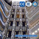 パノラマ式のエレベーターのパノラマ式の上昇