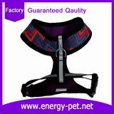 Vestiti del cane della maglia dell'aria, rivestimento del cane, maglia dell'animale domestico, cablaggio del cane