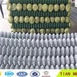 도매 Chian 링크 담 (안핑 공장)