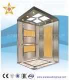 Ascenseur résidentiel bon marché qualifié de levage avec l'entraînement de Vvvf