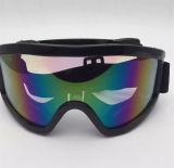 Lentilles photochromiques Lunettes de ski