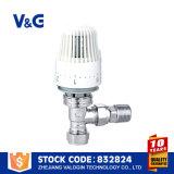 La mejor válvula termostática del radiador de Valogin