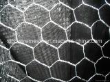 Rede de fio sextavada com fio galvanizado mergulhado quente