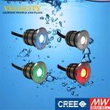 24V Wall Power High Power CREE LED Swimming Pool Light