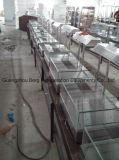 Vetrina Uovo-Acida calda d'acciaio Bg-210 di Stainelss del forno/memoria/ristorante