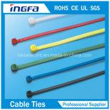 Inlegsel van het Roestvrij staal van de Band van het Pit van Ce het ISO9001 Goedgekeurde Nylon