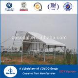 Tienda de aluminio grande del partido del marco de Cosco