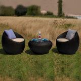Jeu extérieur de sofa de rotin de meubles de salon de jardin de présidence de forme ronde d'oeufs