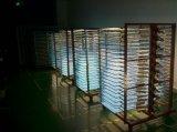 30W uiterst dunne LEIDEN van het Aluminium Licht Comité met de Bestuurder 60X30 van Philips