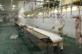 Horizantalのタイプ平らな羽根を取る機械