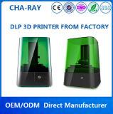 Impressora 3D industrial do DLP dos PRECÁRIOS da elevada precisão da Amigo-Raia 0.02mm