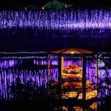 크리스마스 스타킹 훈장 빛 반짝임 별 휴일 빛