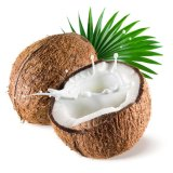 Polvere della spremuta della noce di cocco per sapore dell'alimento e della bevanda