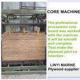 Rayonner le faisceau de peuplier de contre-plaqué de pin pour le marché de la Russie de construction