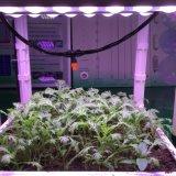 O diodo emissor de luz cresce claro com copo e lente do refletor para plantas