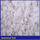 Cloreto de sódio industrial de sal dos compradores de sal do mar