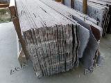 Multi taglierina del blocchetto delle lamierine di lubrificazione (DQ2200)