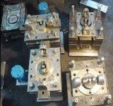 Water Filter (WBM-201270)のための中国Professional Plastic Mould