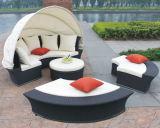Salón al aire libre Set / Muebles de jardín (BP-602)