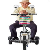 Трицикл 3 Уилеров электрический с Ce&RoHS
