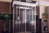 Elevador de visita turístico de excursión lleno cómodo del chalet del hogar del espejo de la seguridad del DSK