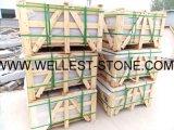 Migliore prezzo della pavimentazione G302 del lastricatore della scala delle mattonelle esterne della pietra facente un passo