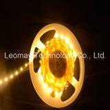 알맞은 가격 좋은 품질을%s 가진 SMD3528 LED 지구 빛 12VDC