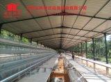 Het Ontwerp van de Batterijkooi van Jinfeng Voor de Kip van de Laag