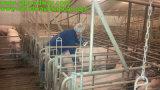 Портативный блок развертки ультразвука для животной внимательности, для Bovine реактор-размножителов, хуторянин, клиники Veterian