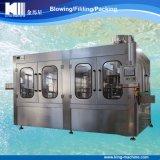 Spremuta della bottiglia di vetro o dell'animale domestico che riempie la linea di produzione completa
