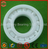 Rodamiento de cerámica y rodamiento del híbrido en el ambiente tremendo (6204CEF)