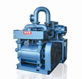 Pompe mécanique de l'étape H-150 simple pour l'imprégnation sous vide