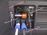 Vrx918spの専門の実行中か電力線アレイSubwoofer