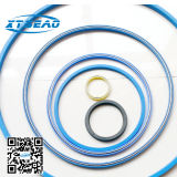 PTFE Material als Standard Spring Seal