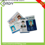 carte en plastique d'identification d'élève d'école de photo des employés de PVC