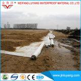 Prodotto non intessuto superiore del geotessuto del poliestere del rifornimento del fornitore della Cina