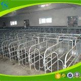 Клеть беременность свиньи оборудования фермы свиньи прочная для хавроний