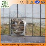 La venta caliente más barata y fácilmente instalado Multispan vidrio invernadero / vidrio grande invernaderos agrícolas