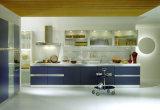 プロジェクトのために適した小さいフラットパックのアパートの台所Cabient
