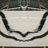 Branco de mármore da panda com veias pretas