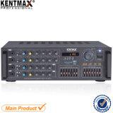 2*7 congriega amplificador de Digitaces KTV de la visualización de LED de EQ el mini con generación de eco