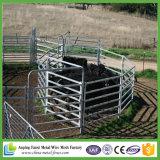 El panel portable galvanizado barras del corral de 6 ganado del tubo cuadrado