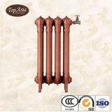 Le radiateur de chauffage populaire le plus neuf de fer de moulage de décoration de Chambre du plus défunt type