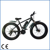 Pedal Assisted (OKM-689)の48V 500W Fat Tire Electric Bicycle