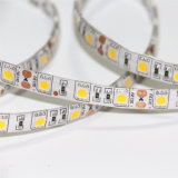 5630 30LED 10mm 5V 5m / Bobine White LED Flexible Strip