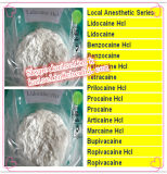 약제 급료 프로카인 HCl 국부적으로 마취 분말 Aminocaine